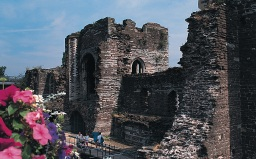 Image of Newport castle