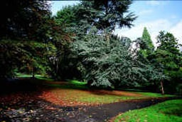 Image of Belle Vue Park