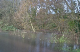 Image of flooding in the fields at Glasllwch