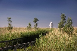 image of Newport Wetlands Reserve